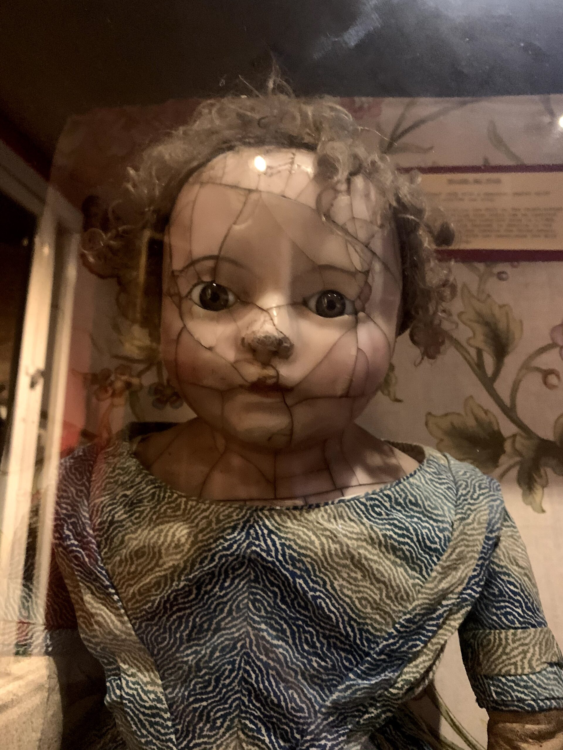 Afraid of Dolls? Then this place is not for you!